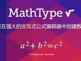 [工具软件]MathType数学公式编辑器下载,MathType编辑器中文完美破解版下载