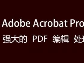 [PDF编辑软件]PDF文档编辑软件Adobe Acrobat下载,Adobe Acrobat Pro 2020 DC中文直装破解版