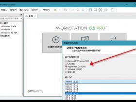 [工具软件]VMware Workstation威睿虚拟机软件下载,VMware Workstation v15.5.2 绿色精简版