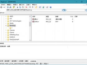 [辅助工具]RegCool注册表编辑管理软件下载,RegCool v1.118 绿色单文件