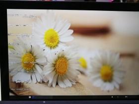 [实用教程]电脑桌面显示花屏图标看不清楚,电脑桌面图标和电脑里面的图标花屏解决办法
