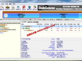 [工具软件]DiskGenius数据恢复硬盘分区软件下载,DiskGenius 5.1.1.696 破解专业版特殊汉化版
