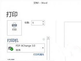 [系统教程]Win10 20H2系统使用Word文档打印不出图片怎么回事?