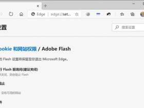[系统教程]Win10系统怎么彻底删除Flash?
