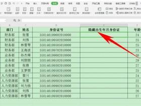 办公软件使用之Excel表格中怎么隐藏身份证号生日