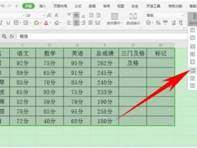 办公软件使用之Excel如何设置输入时自动标注颜色