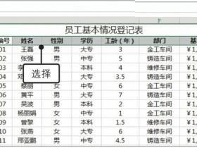 办公软件使用之Excel2019怎么自动筛选?Excel2019中自动筛选数据的方法