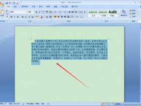 办公软件使用之Word怎么缩放文本?Word2007文本缩放方法简述