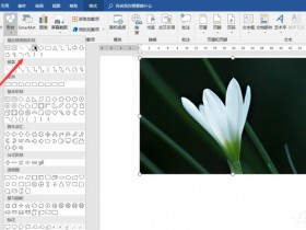 办公软件使用之Word如何制作双重曝光特效?制作双重曝光特效的方法