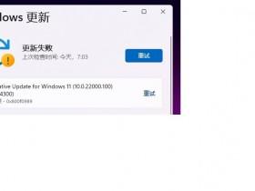 [系统教程]Win11 KB5004300更新失败 安装错误代码0x800f0989