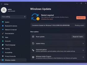 [系统教程]如何安装Windows 11 KB5005188补丁?