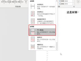 办公软件使用之Word怎么设置第一页不显示页码,从第二页开始显示页码为1?